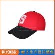 棒球帽(BHX-480)