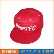 平板帽(PHX-496)