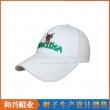 棒球帽(BHX-479)