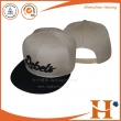 平板帽(PHX-477)