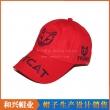 休闲帽(XHX-054)