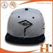 平板帽(PHX-413)